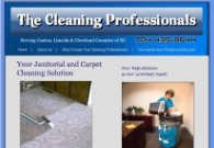 The Cleaning Professionals